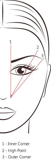Eyebrow Shaping Illustration